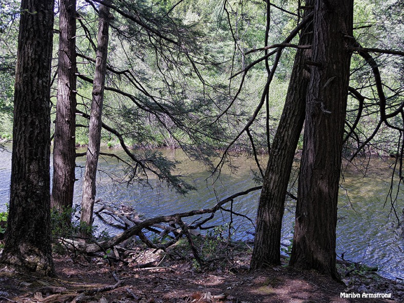 72-Amherst-River_001