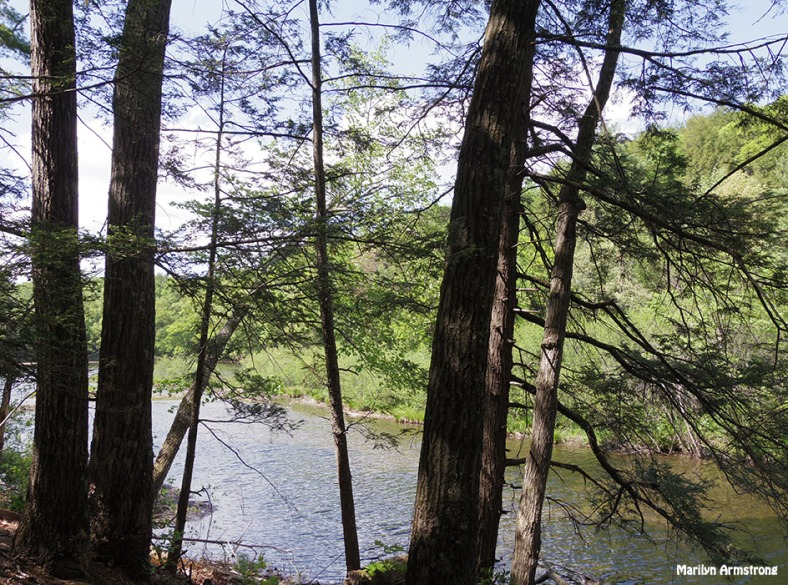 72-Amherst-River_007
