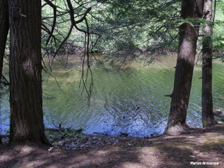 72-Amherst-River_016