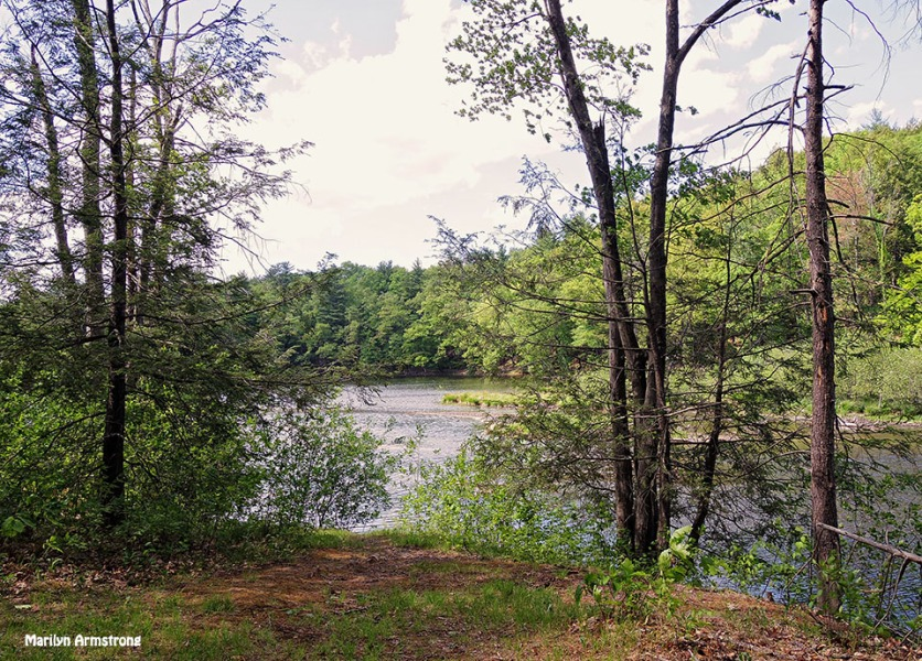 72-Amherst-River_056