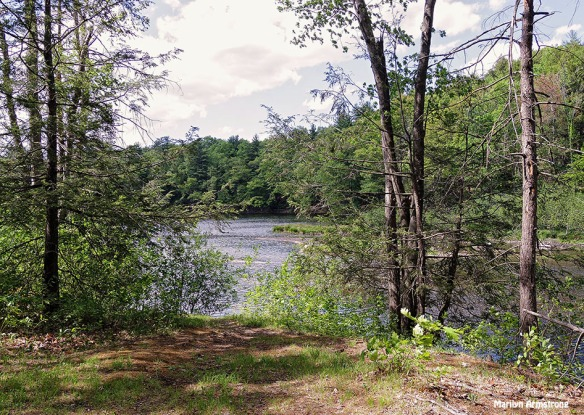 72-Amherst-River_057