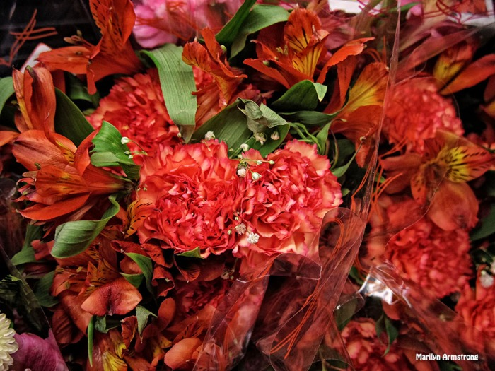 72-Bouquet-1-May_05