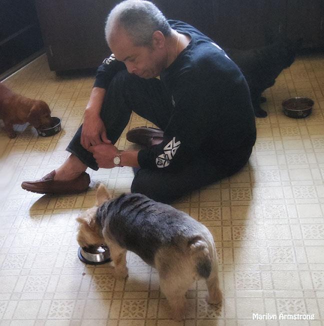 72-Garry dogs dinner_33