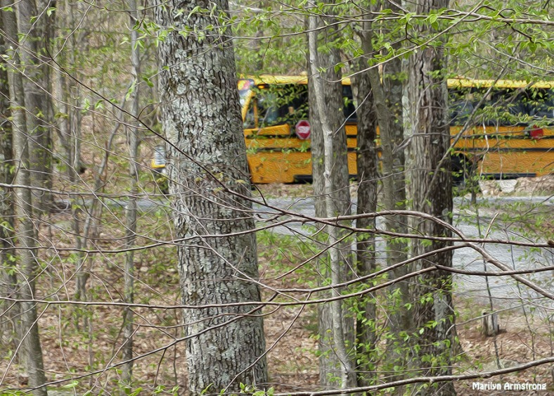 72-OIL-school bus Which-Way_06