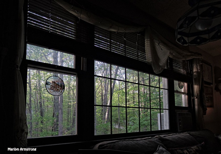 72-window-afternoon-at-home_22