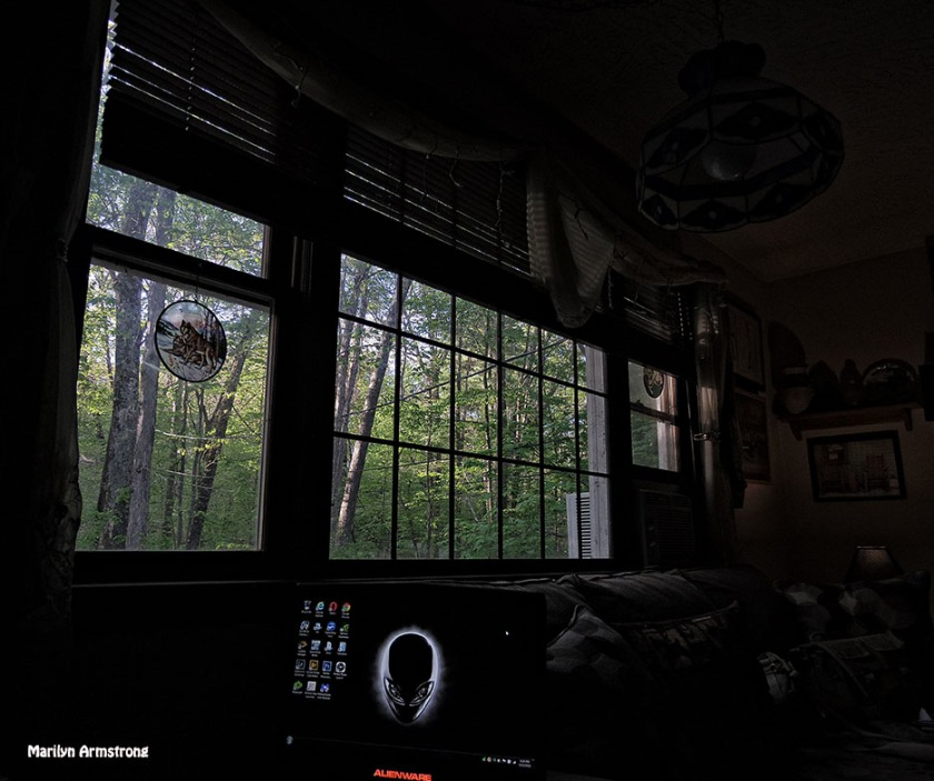 72-window-afternoon-at-home_26