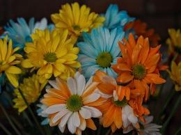 bouquet macro 01