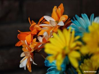 Bouquet Macro 9