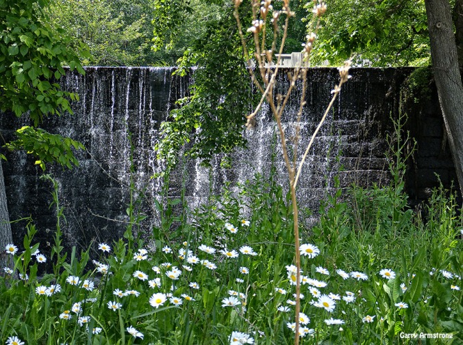 72-Daisy-Dam-Manchaug-GA-06-15_062
