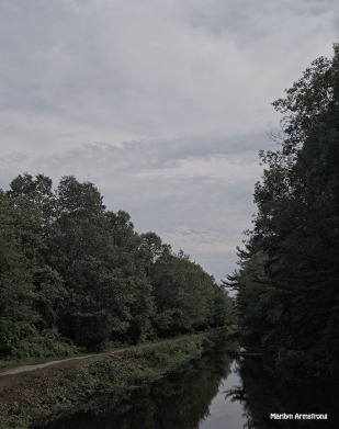 The Canal - June 2015