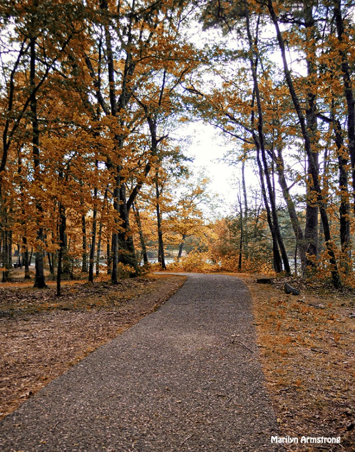 72-False Autumn-Amherst-River_046