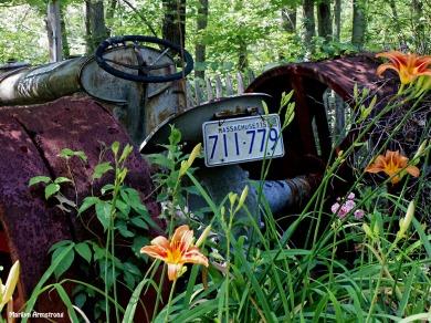 72-Tractor-Garden_43