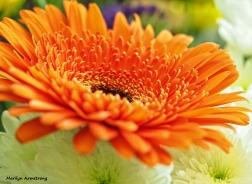 72-bouquet-macros_004