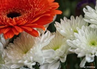 Bouquet Macros 007