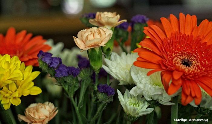 72-bouquet-macros_015