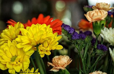 72-bouquet-macros_023