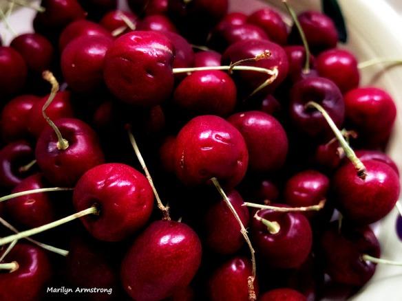 72-Bowl of cherries _12