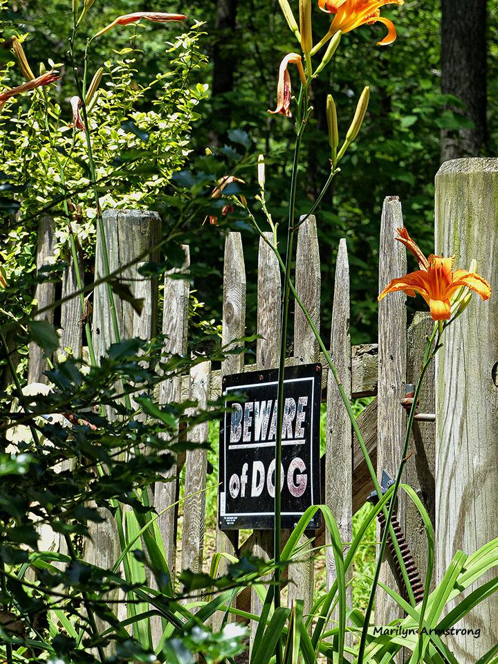 72-Garden-Gate-071015_19
