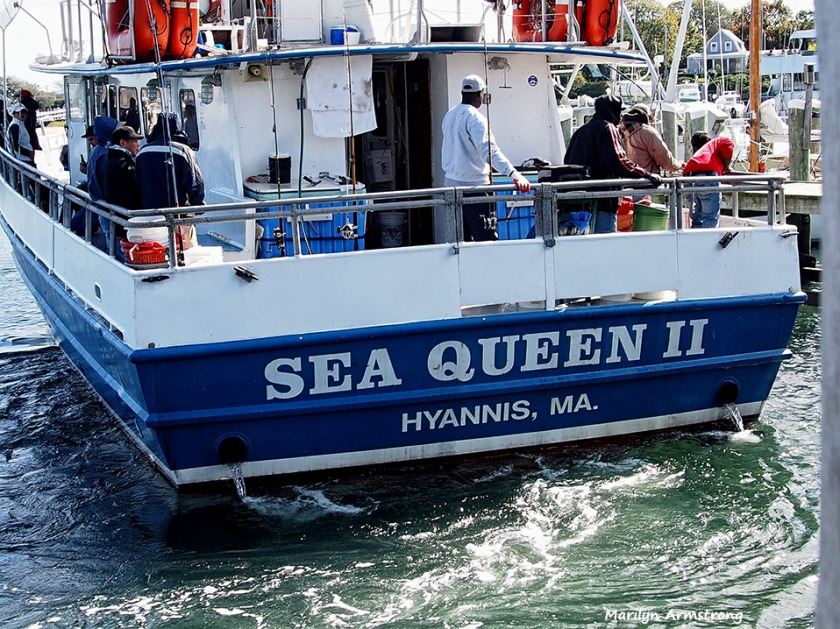 Sea Queen Hyannisport