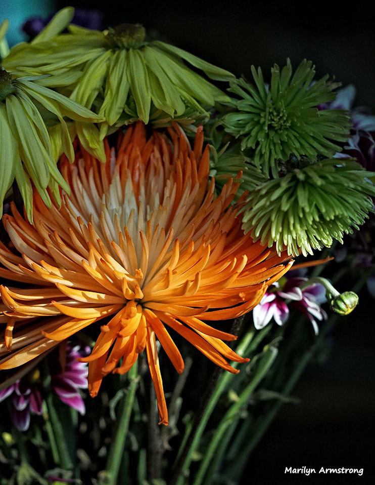 late afternoon bouquet