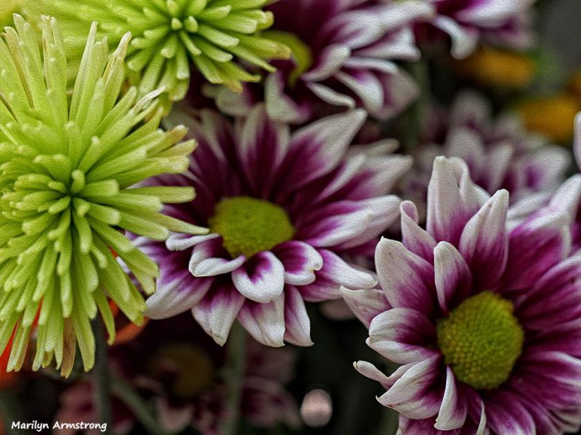 summer bouquet - 2
