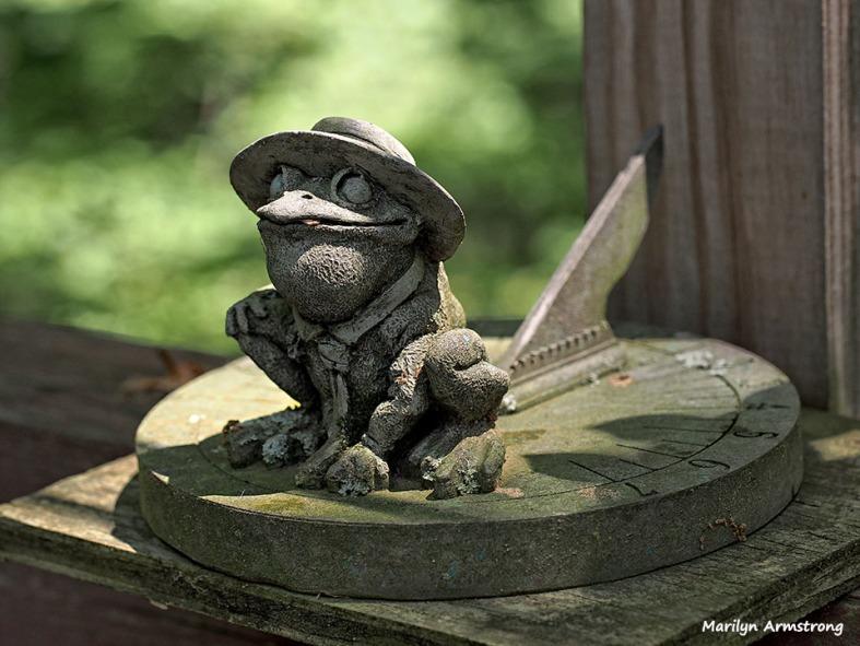 Frog Sundial Portrait