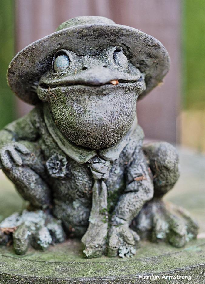 Stone frog sun dial