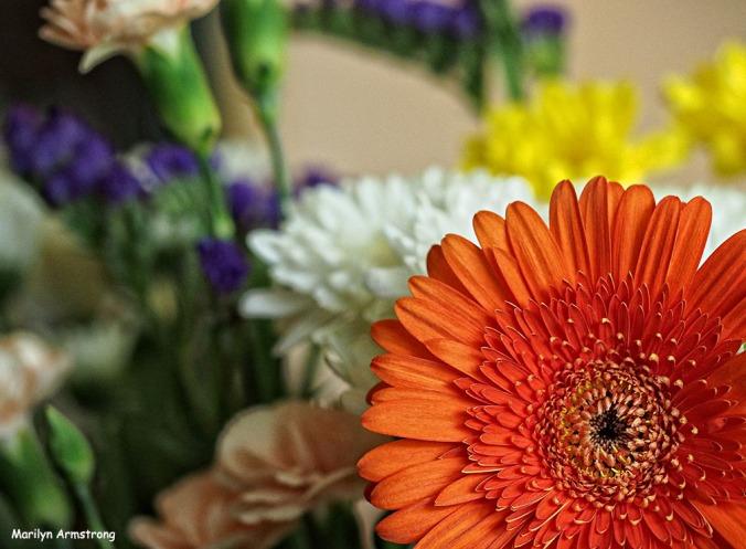 72-summer-bouquet_17