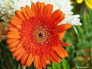 72-summer-bouquet_20