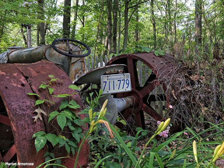72-Tractor-License-Q7_45