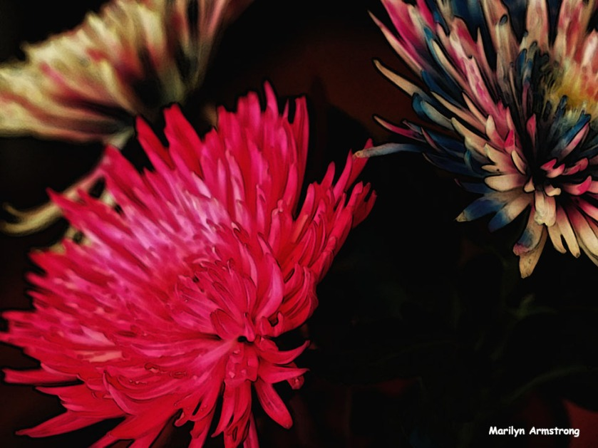 72-effects-painted-bouquet_01