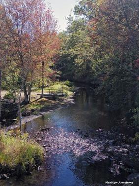 72-Mumford-Dam-100615_066