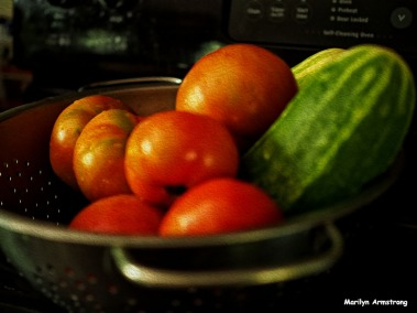 72-oil-vegetables_01