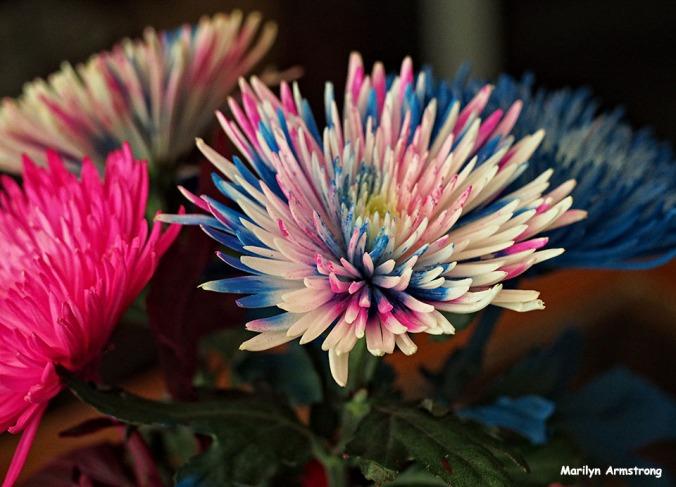 72-painted-bouquet_02