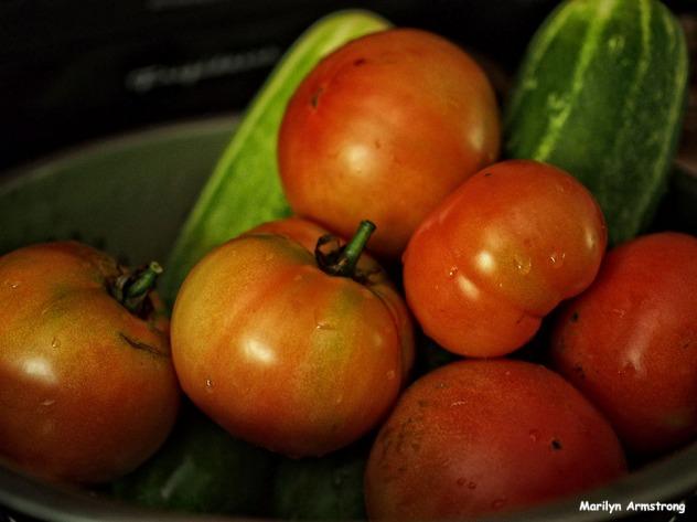 72-vegetables_03