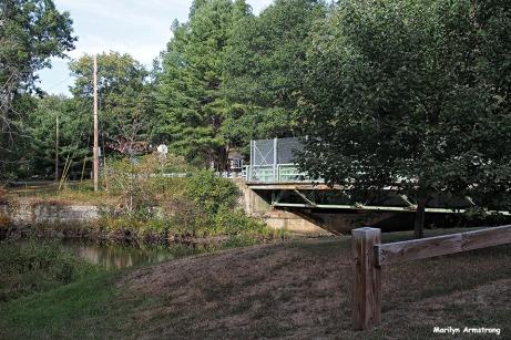 72-aldrich-creek-25mm_099