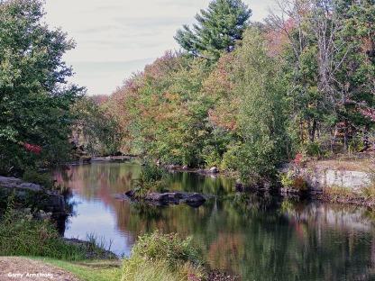 72-Aldrich Creek-GAR_015