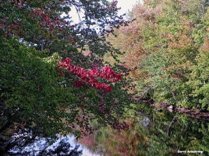 72-Aldrich Creek-GAR_065