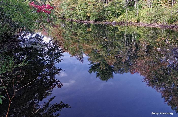 72-Aldrich Creek-GAR_074