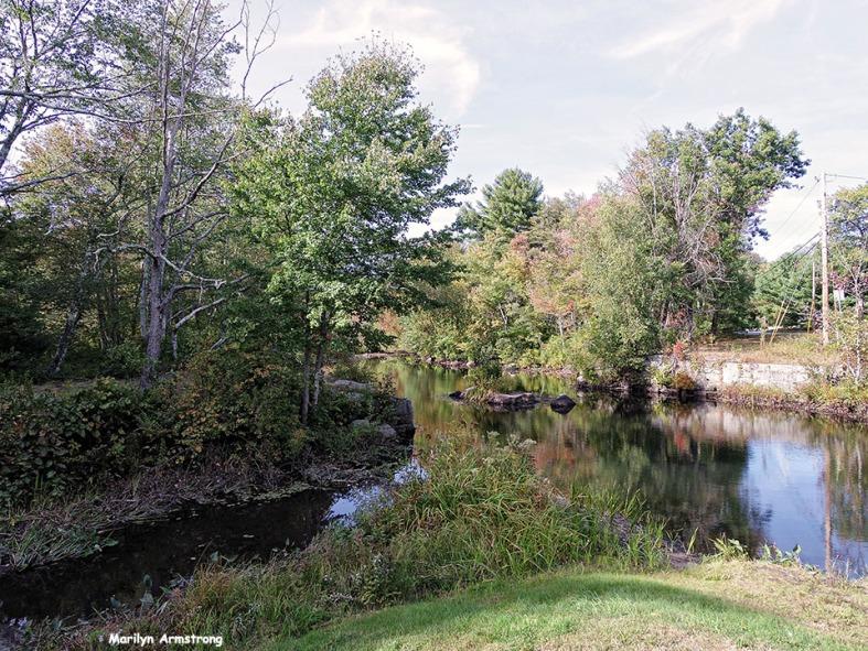 72-Aldrich Creek_001