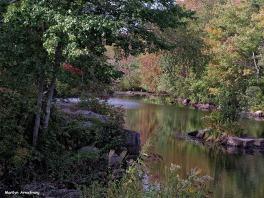 72-Aldrich Creek_006