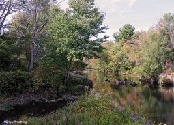 72-Aldrich Creek_007