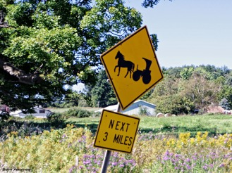 72-Amish-Sign-Cooperstown-GA_102