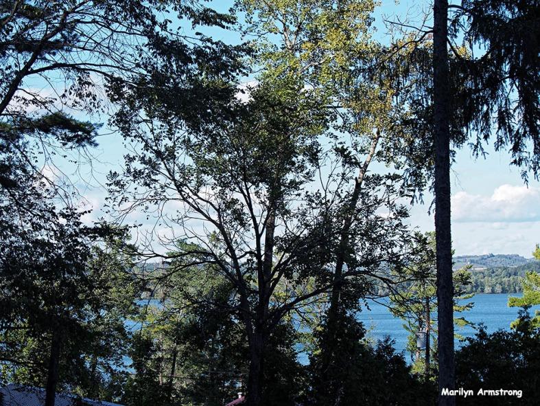 72-lake-otsego_28