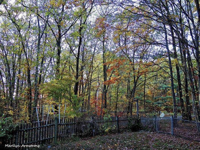 72-Home-Autumn-1023_004