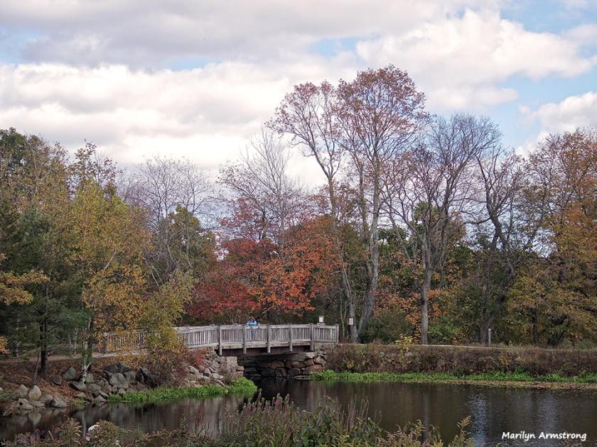 Footbridge at River Bend park