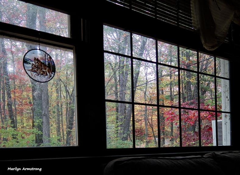 72-Window Dressing_02