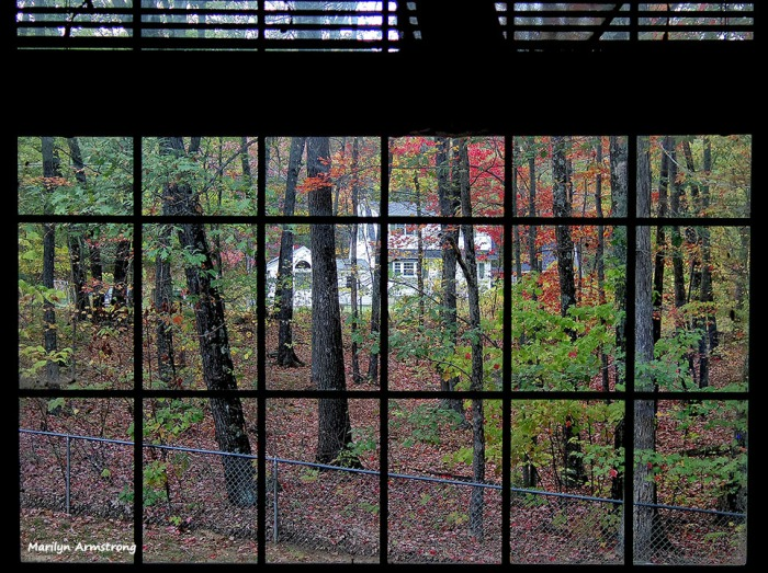72-Window Dressing_09