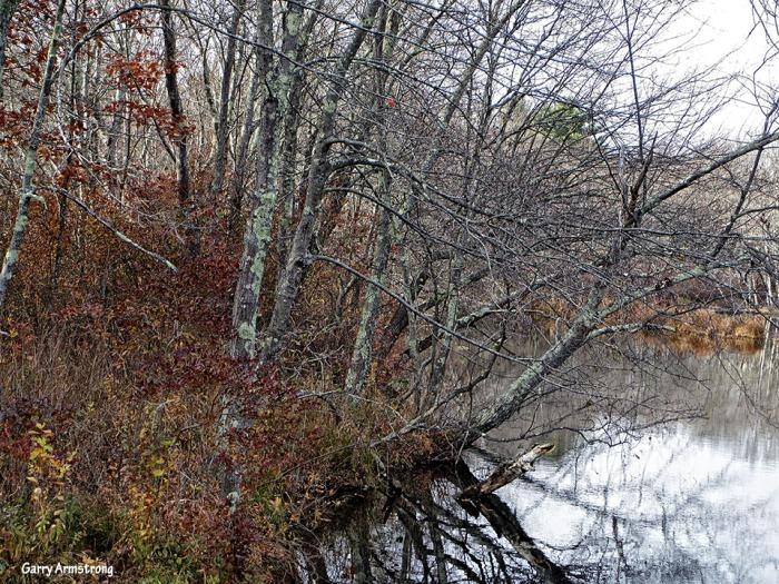 72-Autumn-Garry-1031_079