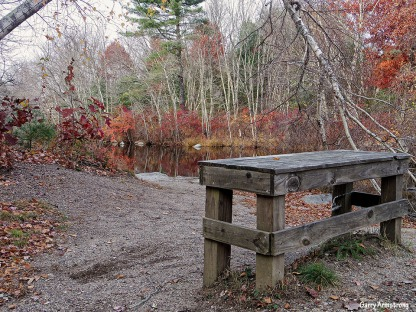72-Bench-Autumn-Garry-1031_031